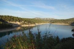 Barrage de Bimont végétation