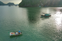 commerce halong