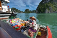 marchand ambulant ha long