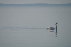 Lagune de Berre calme