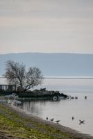 Lagune de Berre bord