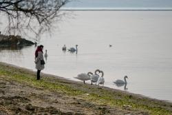 Lagune de Berre nature