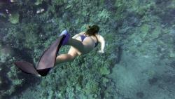 snorkeling Polynésie française