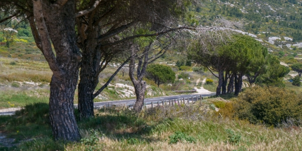 Col de la Gineste Marseille 31