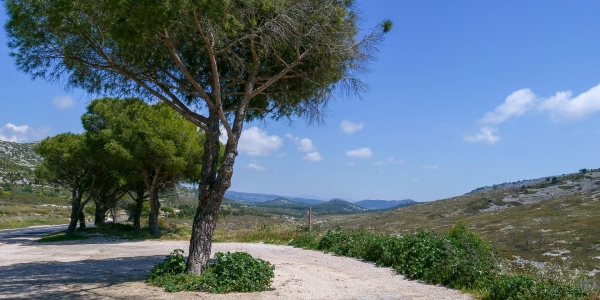 Col de la Gineste Marseille 33