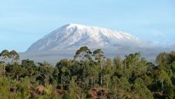 nature Tanzanie