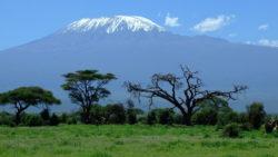 Partir en voyage pour des vacances en Tanzanie, en Afrique de l'Est