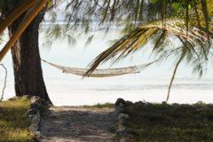 Partir en voyage en vacances en Tanzanie