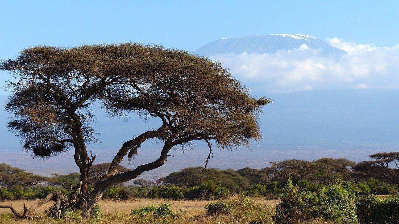 Voyage en Afrique pour l'authentique Kenya