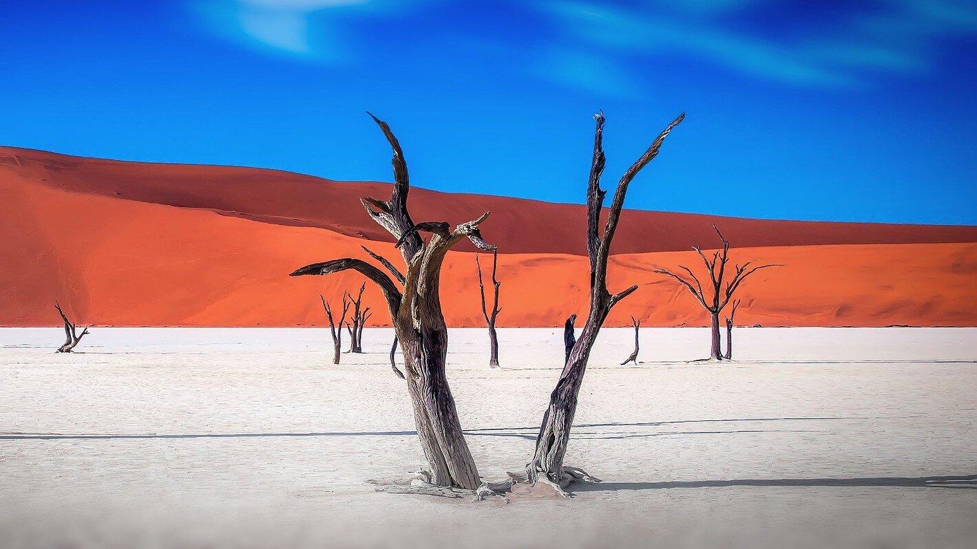 Voyageurs de Namibie