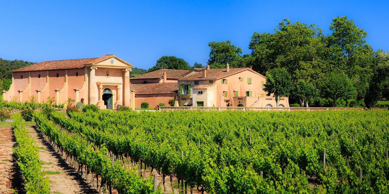 Vignobles Saint Tropez