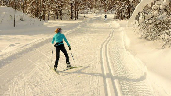 Ski en forêt Serre Chevalier